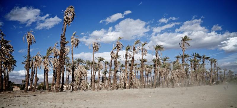 Sandstorm Approaching Bermuda Palms Mobile Estates - Indio, CA - 2015