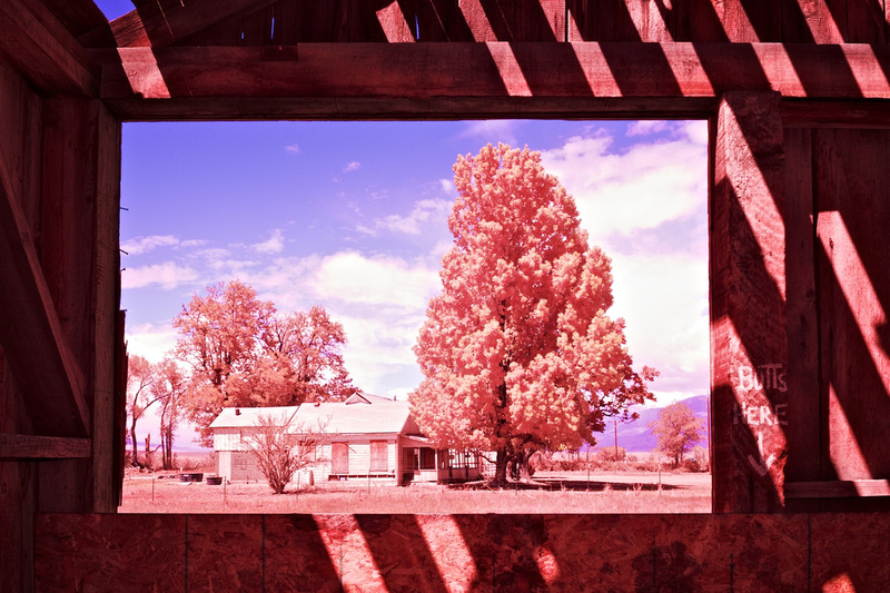 Window View of Boarded-Up Farm House from Abandoned Barn- Bishop, CA -2016