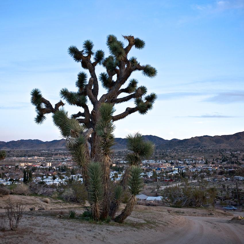 Overlooking Yucca Valley - 2011